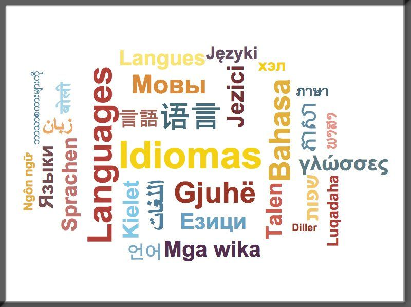 Idioma en idiomas